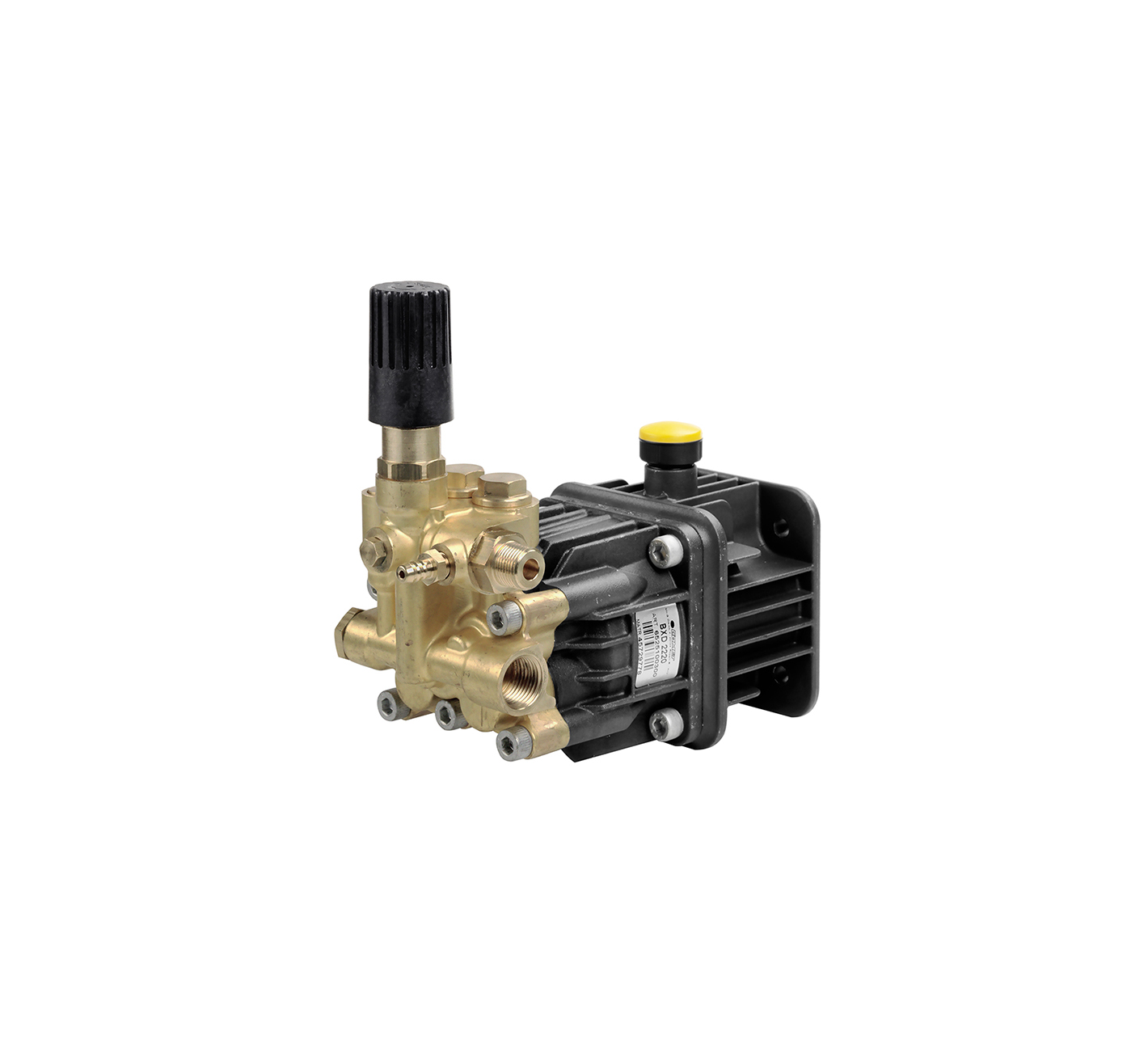 BXD - G 3-4 Comet Industrial Pumps